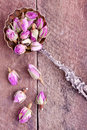 Dried Rose Buds Stock Images - 42522354