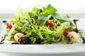 Green Salad Stock Photography - 42528322