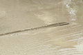 Wood Trowel To Smooth Concrete Ground Stock Photo - 42553270