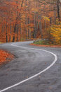 Curved Road Stock Images - 4261324