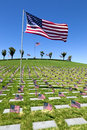 American Flags At National Cemetery Royalty Free Stock Image - 42634976