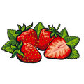 Strawberry Royalty Free Stock Photography - 42641727