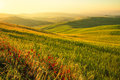 Tuscan Landscape Royalty Free Stock Images - 42676659