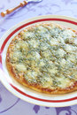 Pizza With Sausage, Mozzarella And Blue Cheese Stock Photo - 42685480