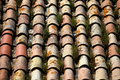 Tile Roof  Grassy Royalty Free Stock Image - 42688646
