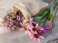 Bunch Of Healing Coneflowers And Sack With Dried Echinacea Flowe Stock Photos - 42689963