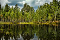 Forest Lake Royalty Free Stock Image - 42693646