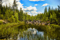 Forest Lake Stock Photo - 42693700