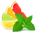 Citrus And Mint Royalty Free Stock Image - 42740656