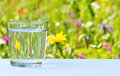Glass Of Water On Grassy Meadow Background Stock Photo - 42759710