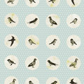 Vintage Seamless Pattern With Cute Little Birds Royalty Free Stock Photography - 42774177