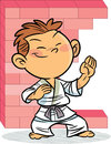 The Boy, Who Is Engaged In Karate Stock Images - 42776064