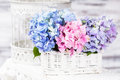 Hydrangea Flowers Royalty Free Stock Image - 42791916