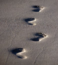 Footsteps In The Sand Stock Image - 42807291