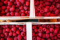 Bast Baskets Of Red Raspberries Royalty Free Stock Image - 42871016