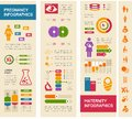 Maternity Infographic Template. Royalty Free Stock Photo - 42900195