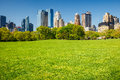 Central Park, New York Royalty Free Stock Image - 42957216
