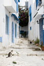 Blue Doors, Window And White Wall Of Building In Sidi Bou Said Stock Image - 42981641