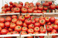 Red Tomatoes Stock Image - 43016381