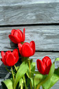 Boards Brighten By Red Tulips Stock Photos - 4317583