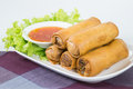 Fried Vegetable Egg Roll, Spring Roll Stock Photography - 43120172