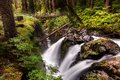 Sol Duc Falls In Olympic National Park Royalty Free Stock Photos - 43134558