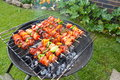Backyard Barbecue Stock Photography - 43148102