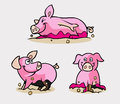 Cute Pig Cartoon Character Royalty Free Stock Images - 43156389