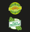 100 Percent Pure Nature Green Sign Label Royalty Free Stock Images - 43163279