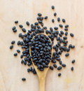 Black Beans Royalty Free Stock Images - 43222189