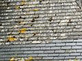 Chateau Slate Roof Detail With Repair Royalty Free Stock Photography - 43257447