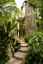 Concrete Structure In The Jungle Royalty Free Stock Photos - 43287988