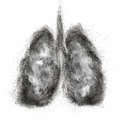Lungs Made Of Black Powder Explosion Isolated On White Royalty Free Stock Photos - 43308028