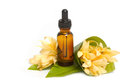 Essential Aroma Oil With Champaka Flower Stock Photo - 43359900