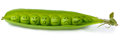 Peas In A Pod Royalty Free Stock Images - 43391139