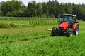 Organic Farmer In Tractor Mowing Clover Field With Rotary Cutter Royalty Free Stock Photo - 43421905