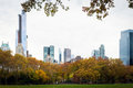 Colorful Tree Line And Midtown Manhattan Buildings Stock Photography - 43492402