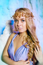 Young Woman In Princess Dress On A Background Of A Winter Fairy Stock Photography - 43520902