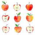 Apple Watercolor Pattern Royalty Free Stock Images - 43563769