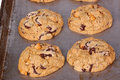 Freshly Baked, Home-made Chocolate And Butterscotch Chip Cookies Royalty Free Stock Photos - 43577738