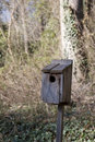 Birdhouse In Winter Royalty Free Stock Photo - 4362995