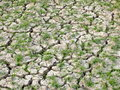Draught Affected Land Without Water Stock Photography - 43654452
