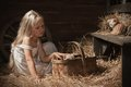 Girl With A Kitten On Hay Royalty Free Stock Images - 43697559