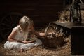 Girl With A Kitten On Hay Royalty Free Stock Photo - 43697605