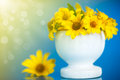 Yellow Daisies Royalty Free Stock Images - 43716869
