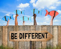 School Of Fish And Be Different Concept Royalty Free Stock Photos - 43728678