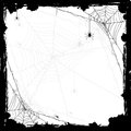 Halloween Background With Spiders Stock Images - 43742044