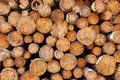 Woodpile Of Cut Lumber Royalty Free Stock Photography - 43795157