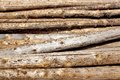 Woodpile Of Cut Lumber Royalty Free Stock Photography - 43797957