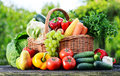 Wicker Basket With Assorted Raw Organic Vegetables In The Garden Royalty Free Stock Photos - 43814208
